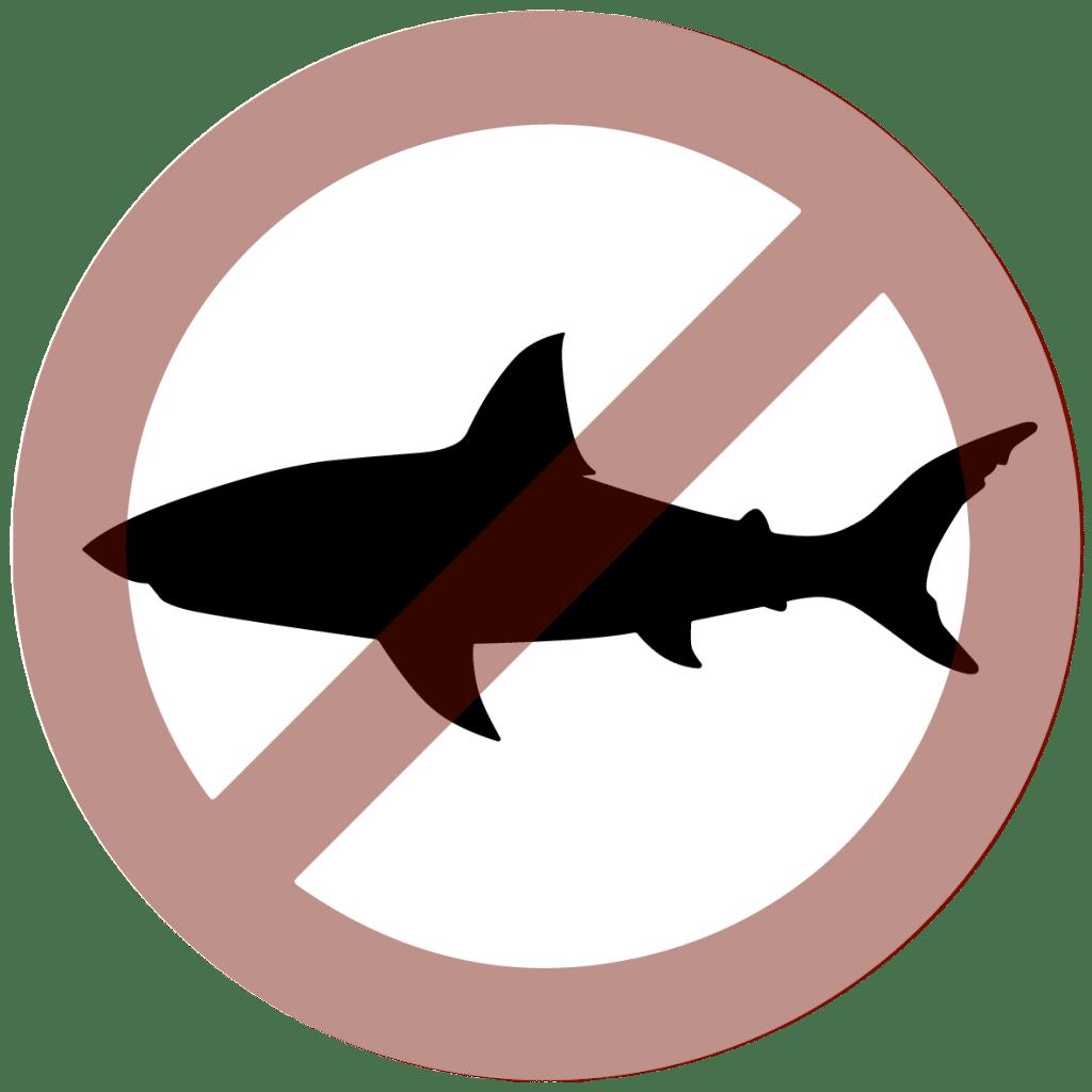requin silouhette