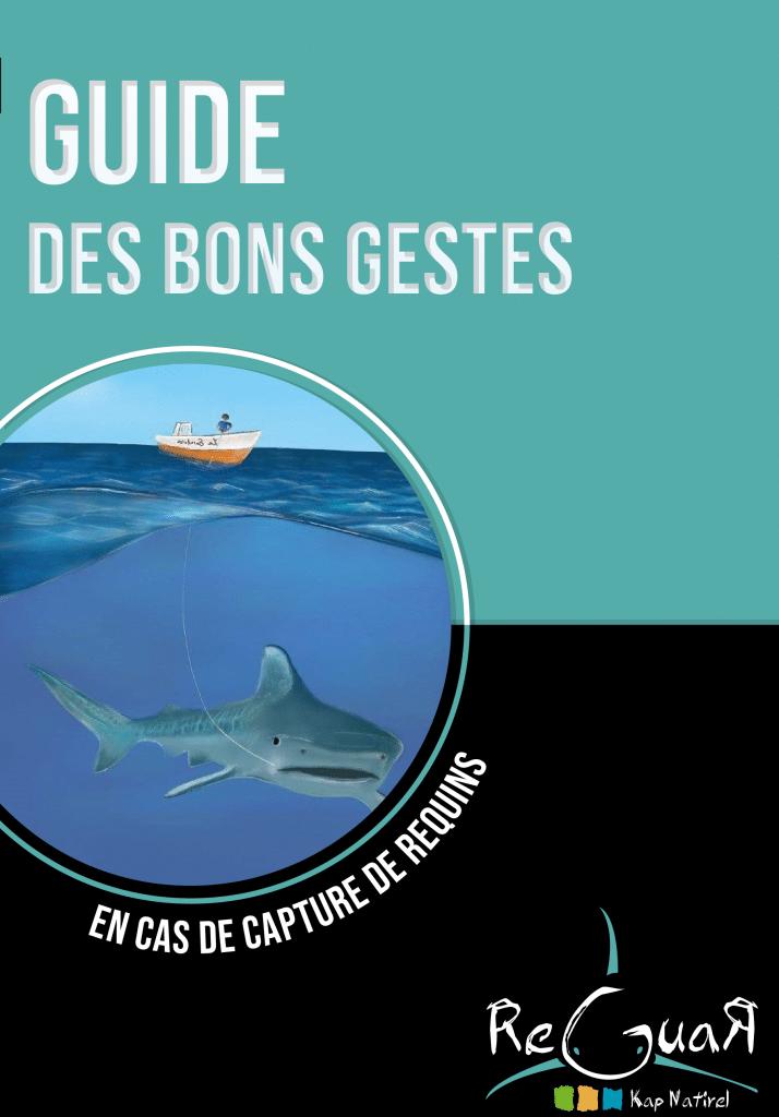 affiche capture requin