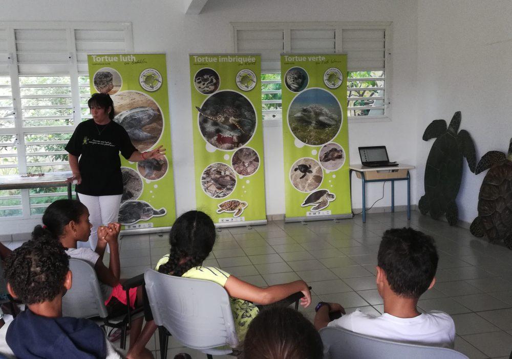 Animation sur les tortues marines, Centre de loisir de Saint Claude
